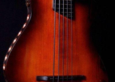 Rikkers Basgitaar Acoustiline Fretless 5-string Closeup