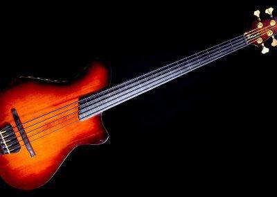 Rikkers Basgitaar Acoustiline Fretless 5-string