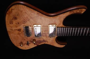Rikkers Waveline Pickups Custom Gitaarbouw