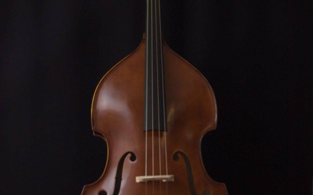 Strunal Double Bass