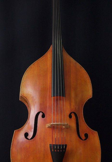 "5-string Double Bass ""De Froe"""
